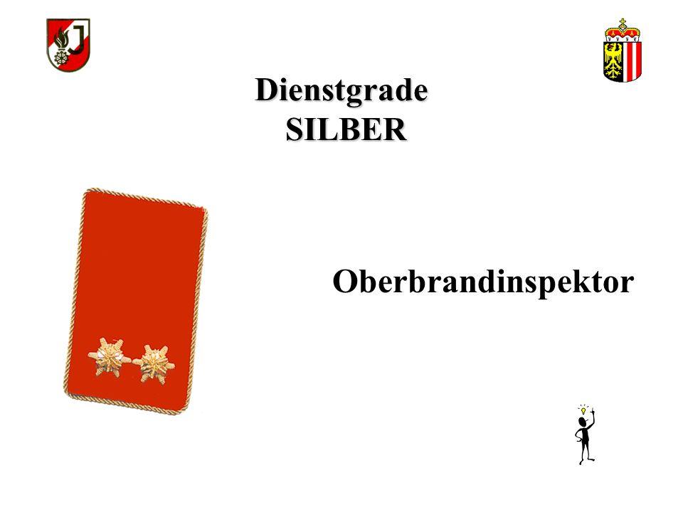 Dienstgrade SILBER Oberbrandinspektor