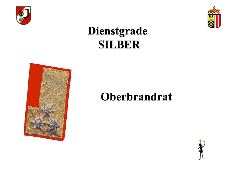 Dienstgrade SILBER Oberbrandrat