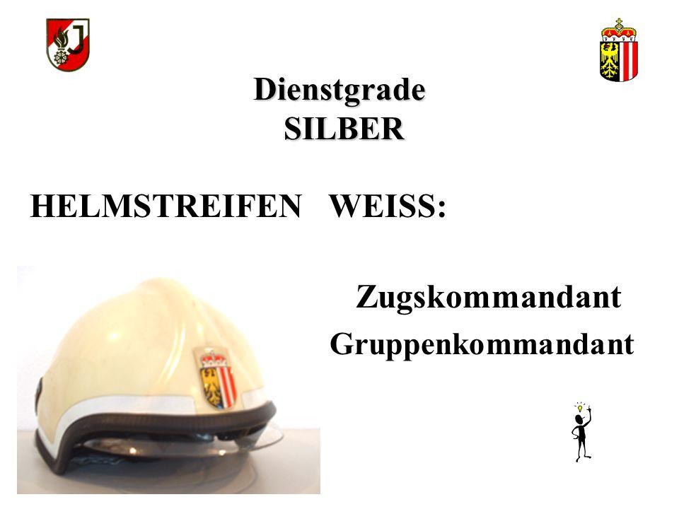 HELMSTREIFEN WEISS: Dienstgrade SILBER Gruppenkommandant