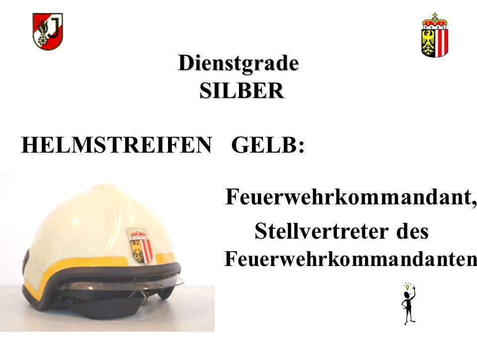 Stellvertreter des Feuerwehrkommandanten