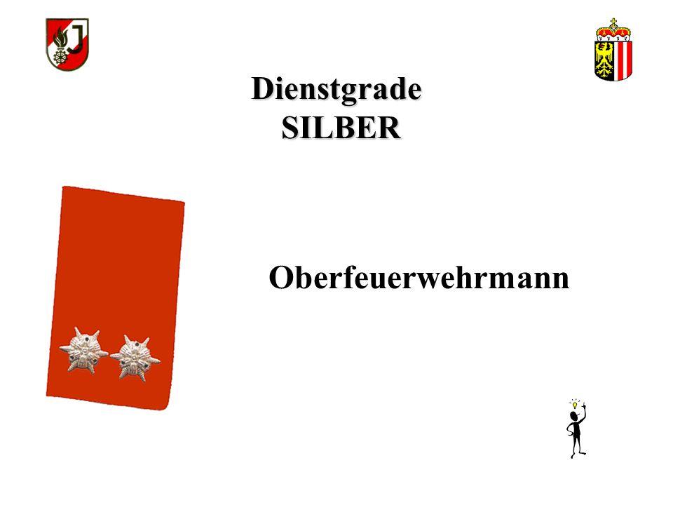 Dienstgrade SILBER Oberfeuerwehrmann