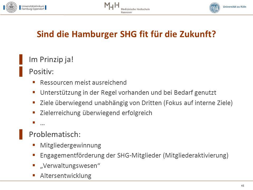 Sind die Hamburger SHG fit für die Zukunft
