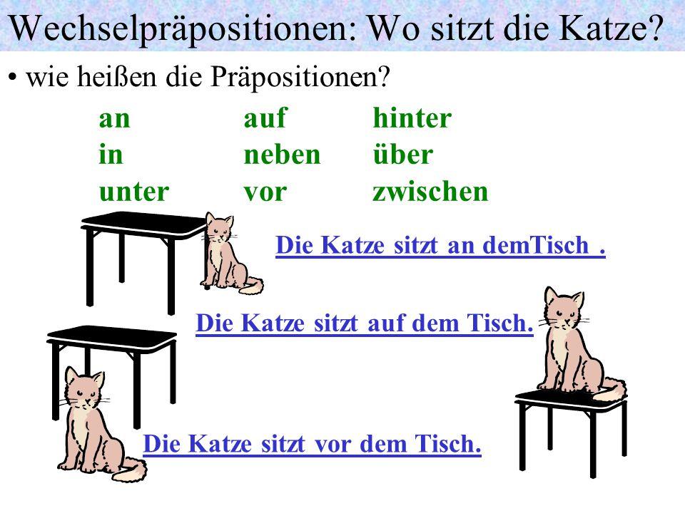 Wechselpräpositionen: Wo sitzt die Katze