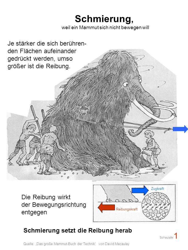 weil ein Mammut sich nicht bewegen will