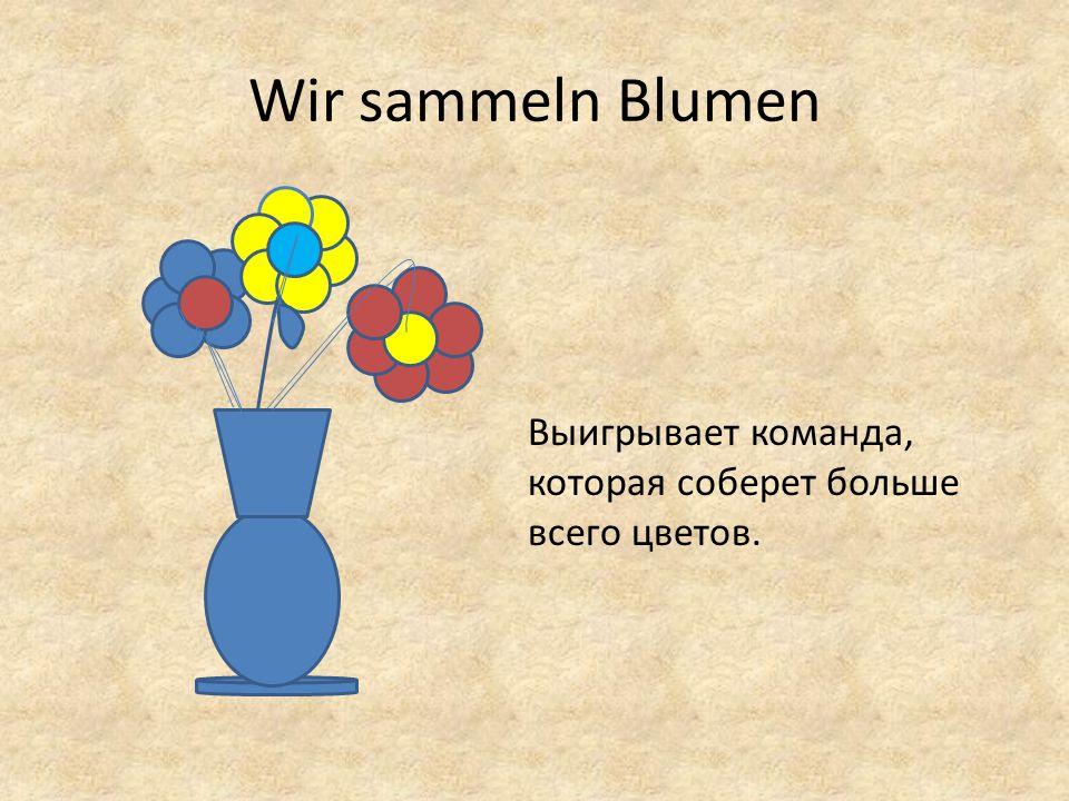 Wir sammeln Blumen Выигрывает команда, которая соберет больше всего цветов.