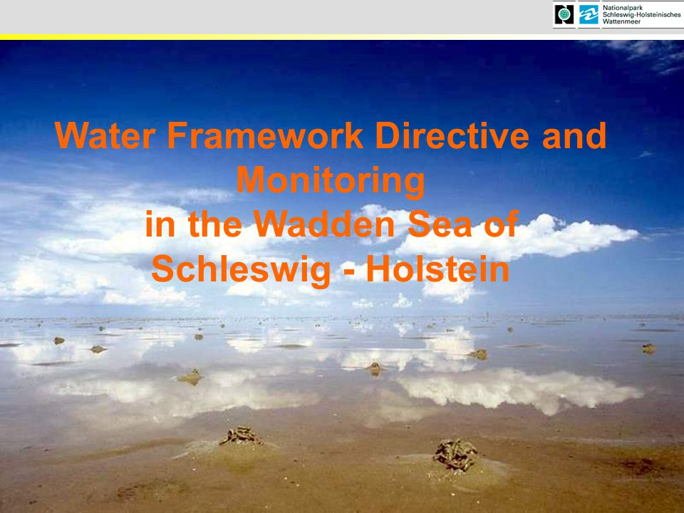 Water Framework Directive and Monitoring in the Wadden Sea of
