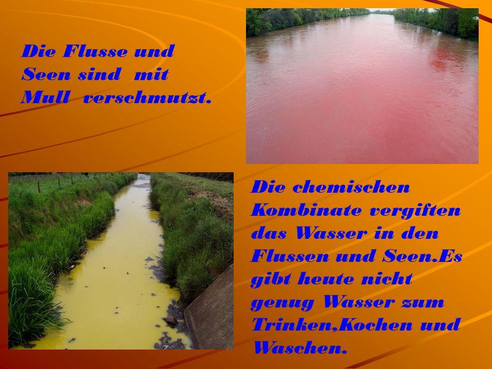 Die Flusse und Seen sind mit Mull verschmutzt.