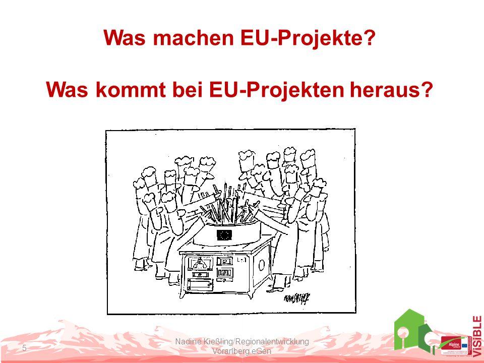 Was machen EU-Projekte Was kommt bei EU-Projekten heraus