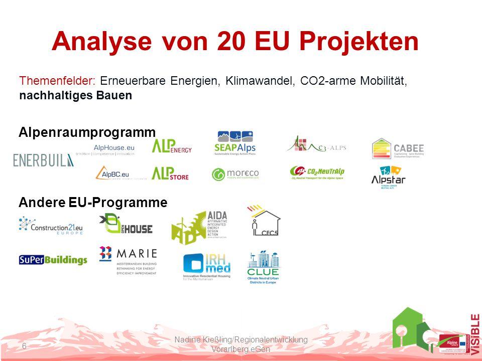 Analyse von 20 EU Projekten