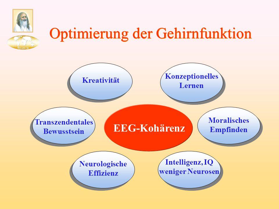 Konzeptionelles Lernen Neurologische Effizienz