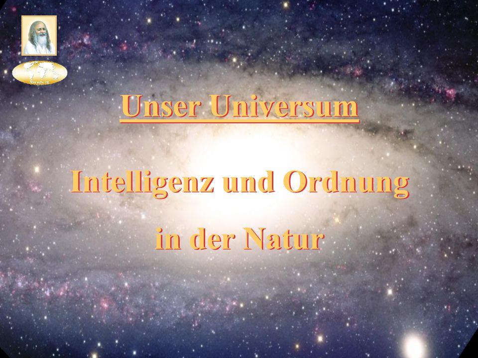 Intelligenz und Ordnung