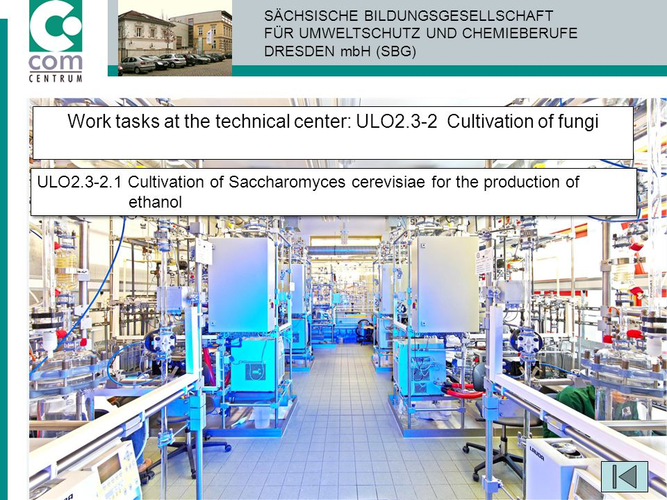 Work tasks at the technical center: ULO2.3-2 Cultivation of fungi