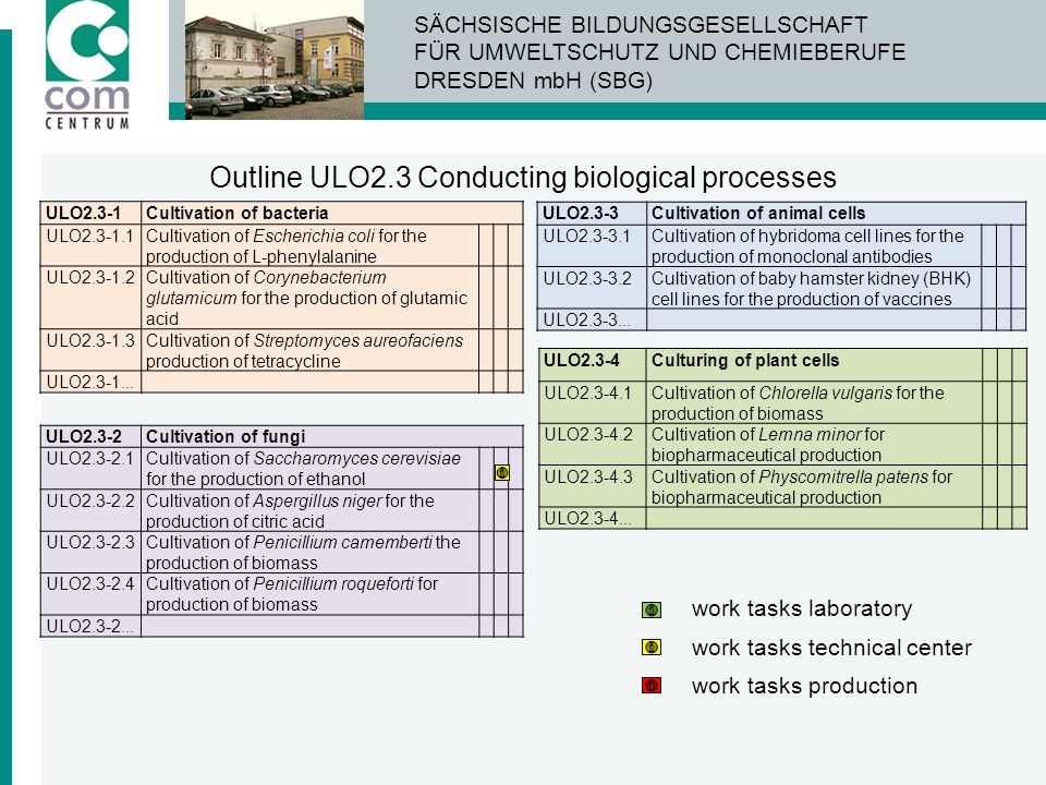 Outline ULO2.3 Conducting biological processes