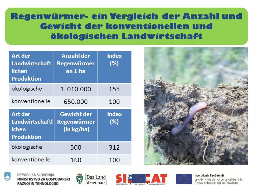 Anzahl der Regenwürmer an 1 ha Gewicht der Regenwürmer