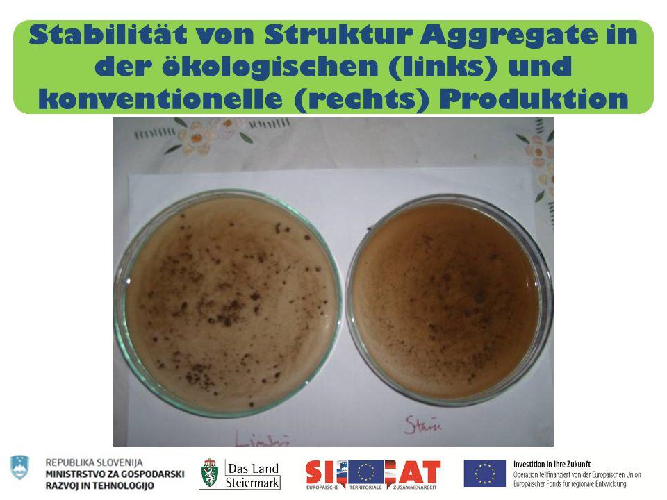 Stabilität von Struktur Aggregate in der ökologischen (links) und konventionelle (rechts) Produktion