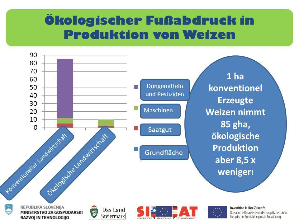 Ökologischer Fußabdruck in Produktion von Weizen