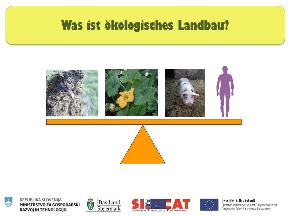 Was ist ökologisches Landbau