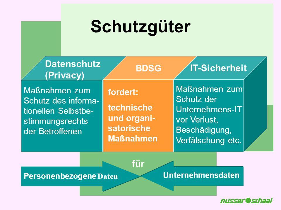 Schutzgüter Datenschutz (Privacy) IT-Sicherheit für BDSG