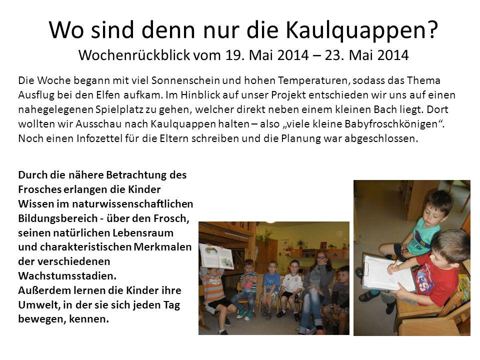 Wo sind denn nur die Kaulquappen Wochenrückblick vom 19. Mai 2014 – 23. Mai 2014