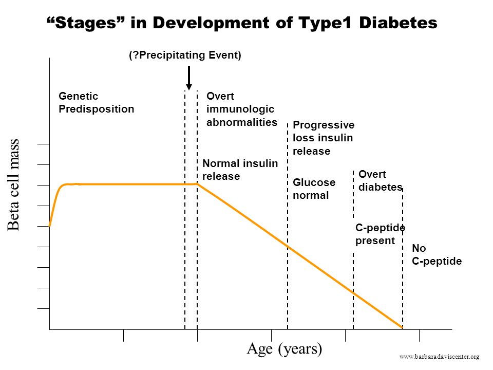 Stages in Development of Type1 Diabetes