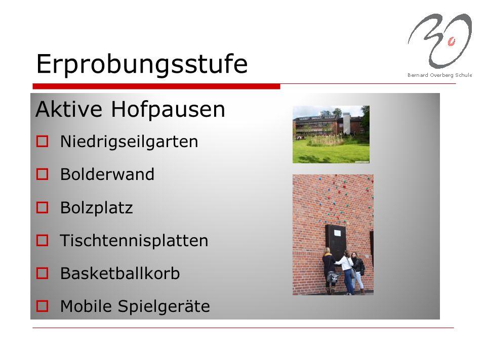 Erprobungsstufe Aktive Hofpausen Niedrigseilgarten Bolderwand