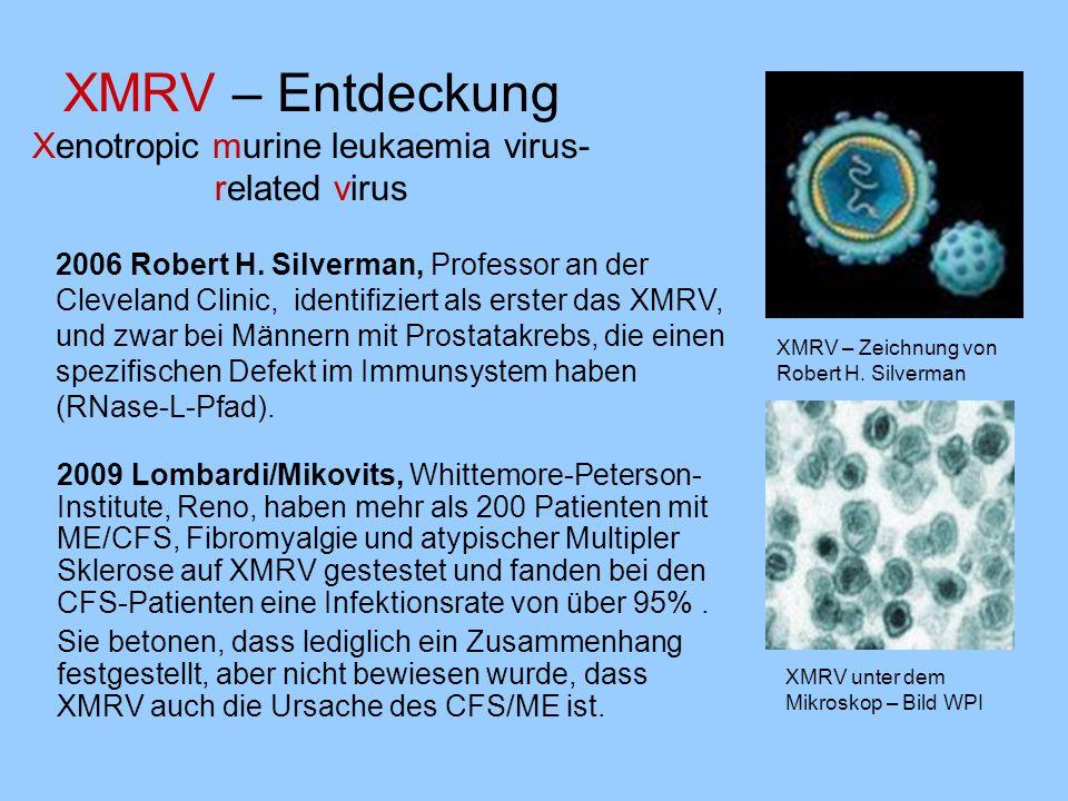 XMRV – Entdeckung Xenotropic murine leukaemia virus-related virus