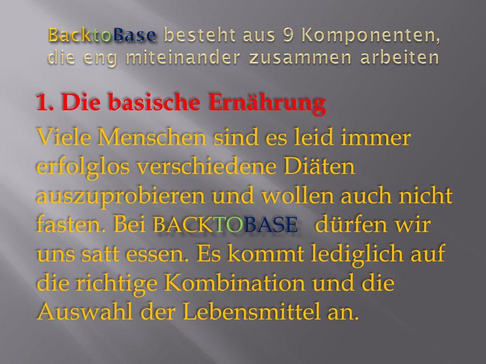 BacktoBase besteht aus 9 Komponenten, die eng miteinander zusammen arbeiten