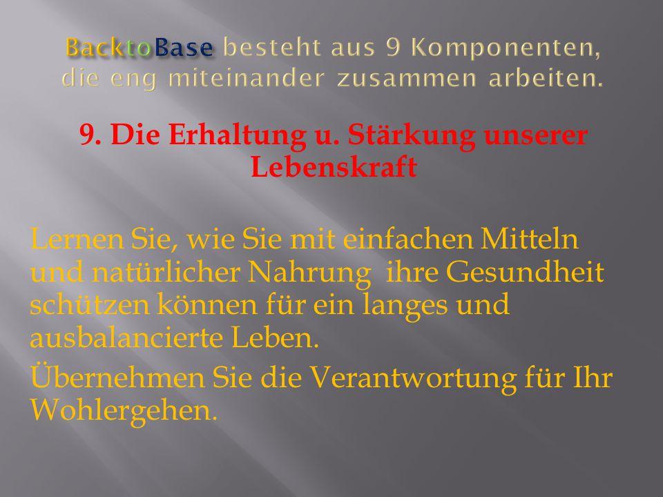 BacktoBase besteht aus 9 Komponenten, die eng miteinander zusammen arbeiten.