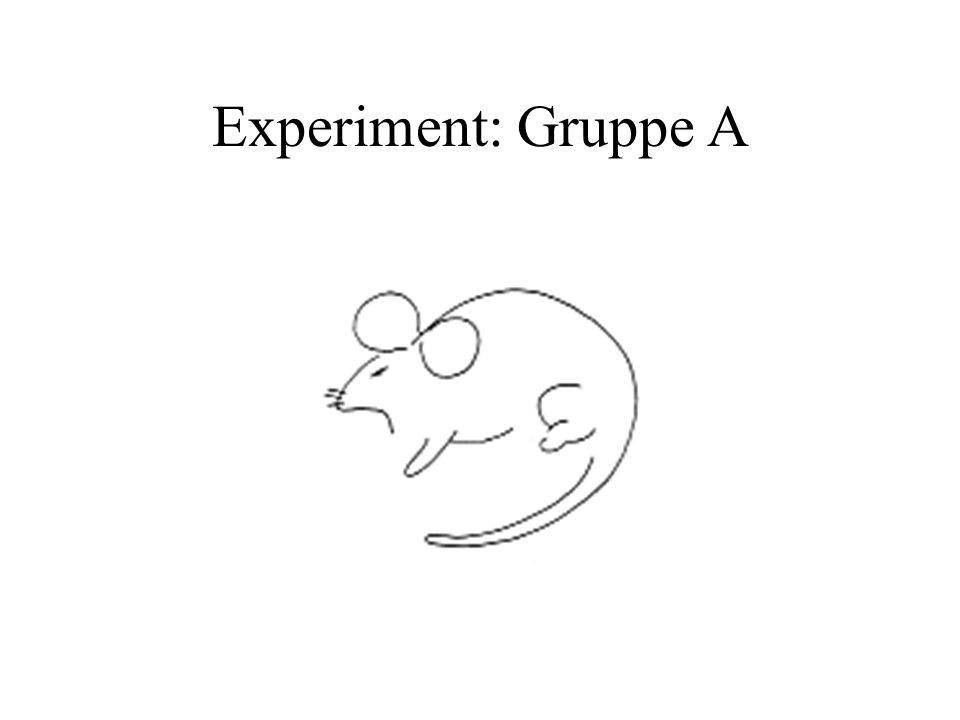 Experiment: Gruppe A