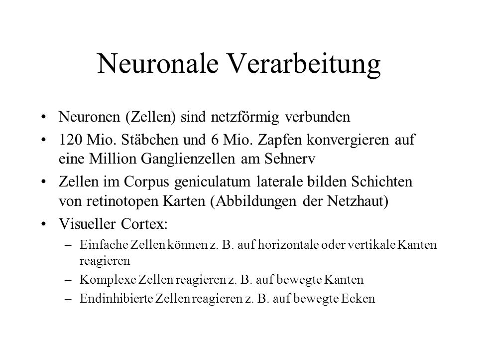 Neuronale Verarbeitung