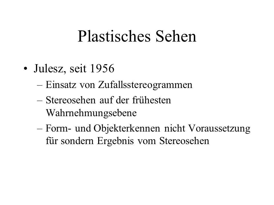 Plastisches Sehen Julesz, seit 1956 Einsatz von Zufallsstereogrammen