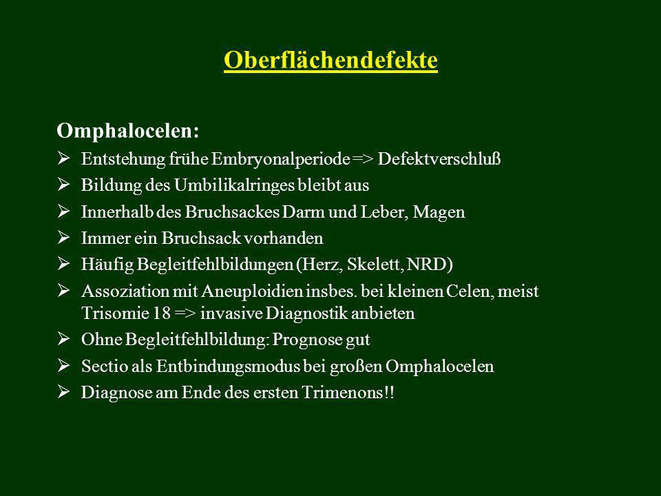Oberflächendefekte Omphalocelen: