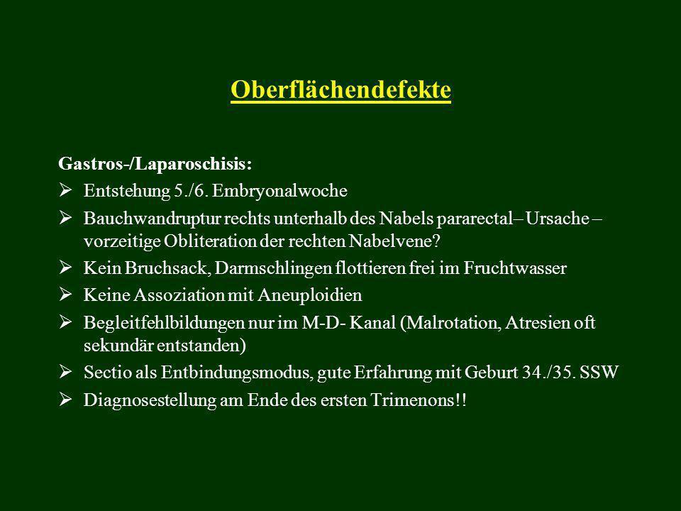 Oberflächendefekte Gastros-/Laparoschisis:
