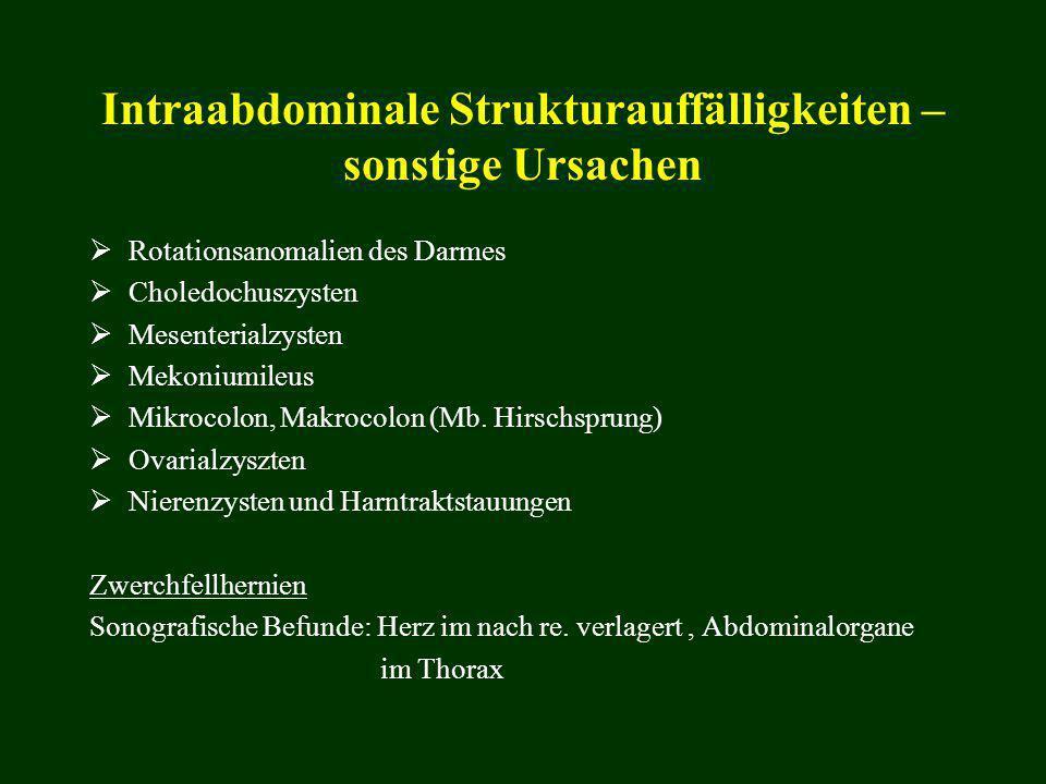 Intraabdominale Strukturauffälligkeiten – sonstige Ursachen