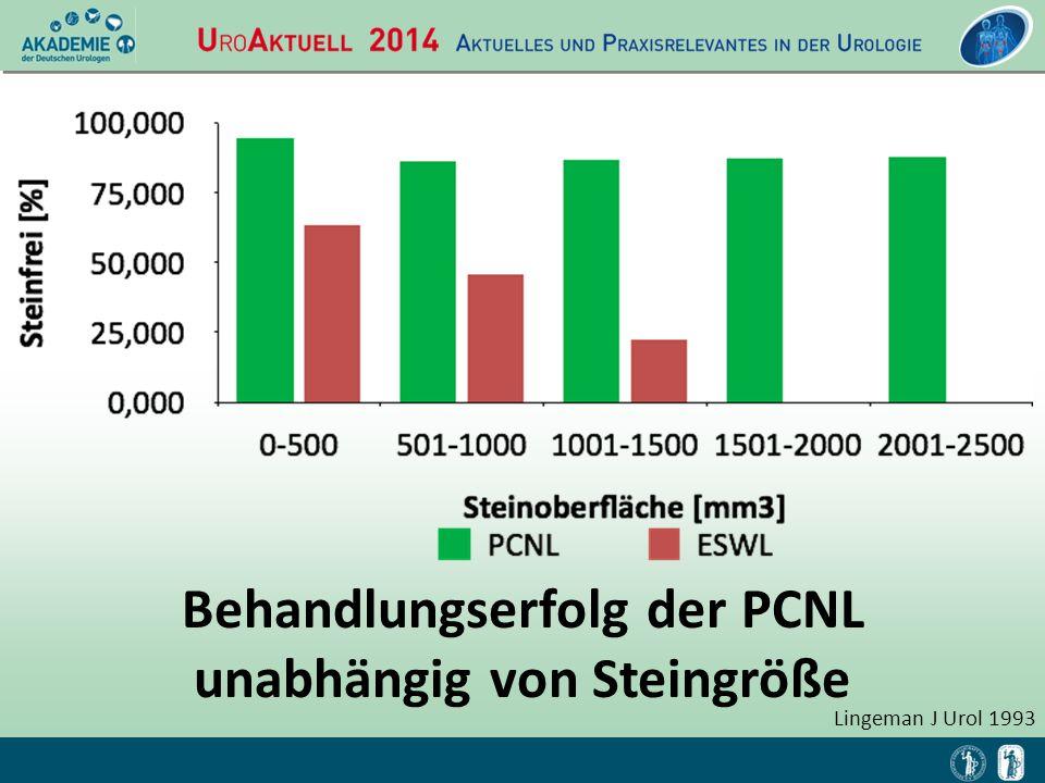 Behandlungserfolg der PCNL unabhängig von Steingröße