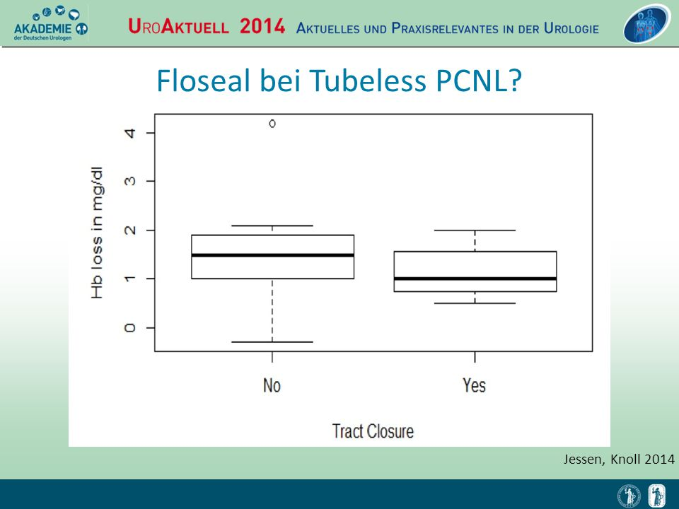 Floseal bei Tubeless PCNL
