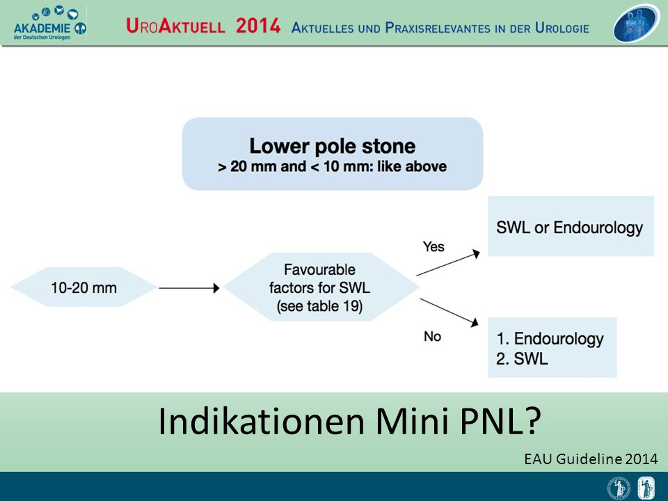Indikationen Mini PNL EAU Guideline 2014