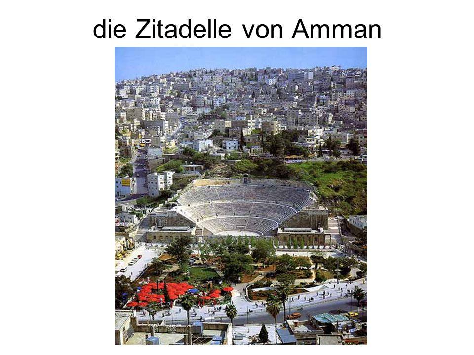 die Zitadelle von Amman