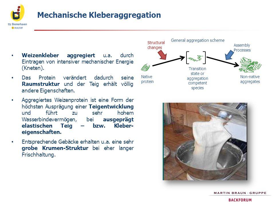 Mechanische Kleberaggregation