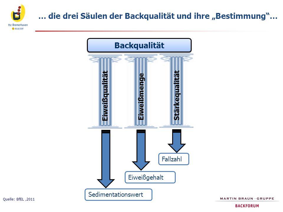 """… die drei Säulen der Backqualität und ihre """"Bestimmung …"""