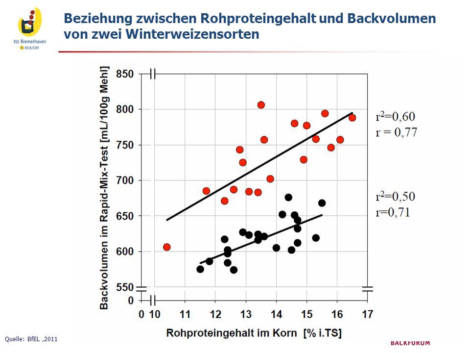 Beziehung zwischen Rohproteingehalt und Backvolumen