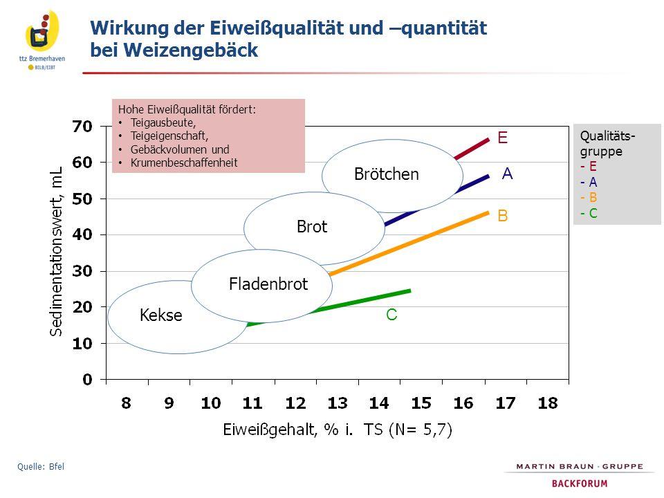 Wirkung der Eiweißqualität und –quantität bei Weizengebäck