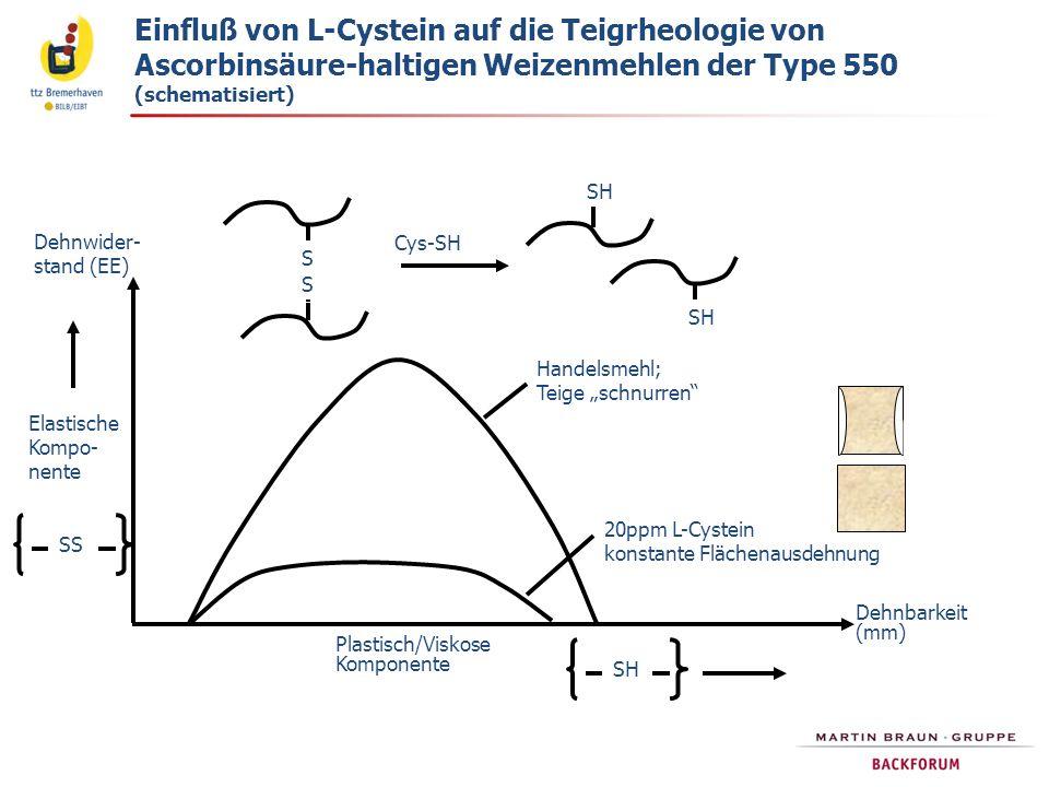 Einfluß von L-Cystein auf die Teigrheologie von Ascorbinsäure-haltigen Weizenmehlen der Type 550 (schematisiert)