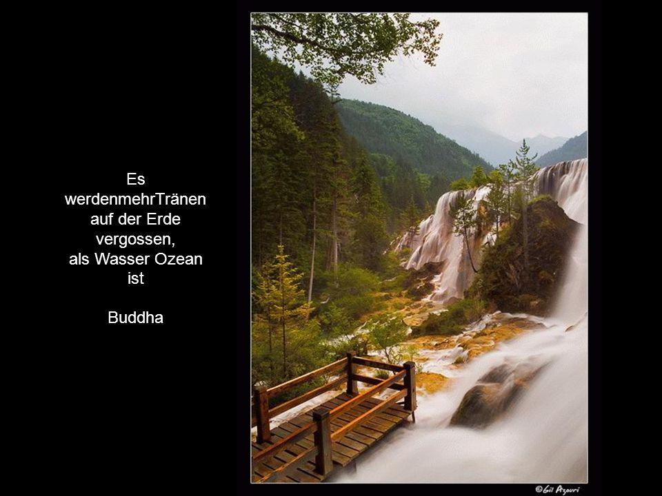 Es werdenmehrTränen auf der Erde vergossen, als Wasser Ozean ist Buddha