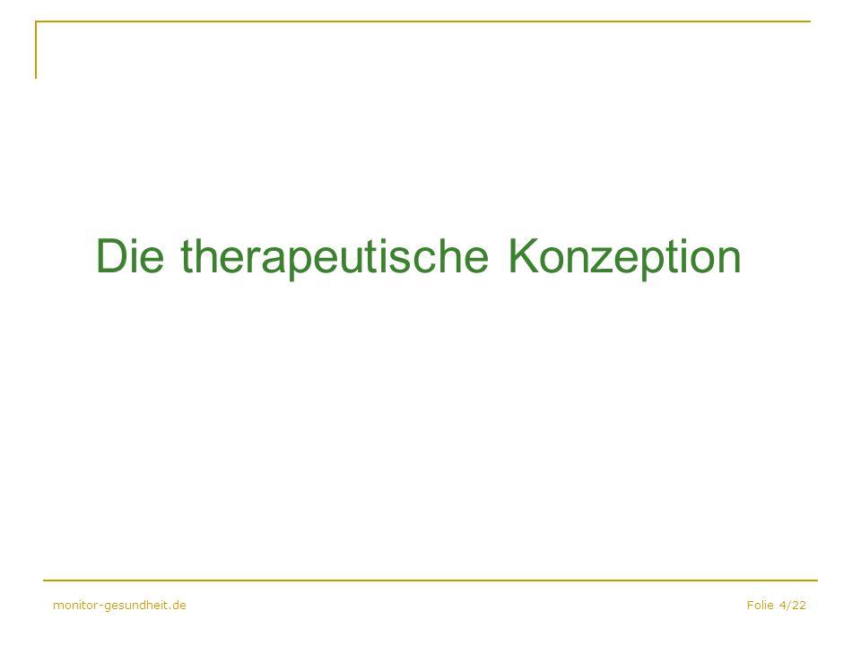 Die therapeutische Konzeption