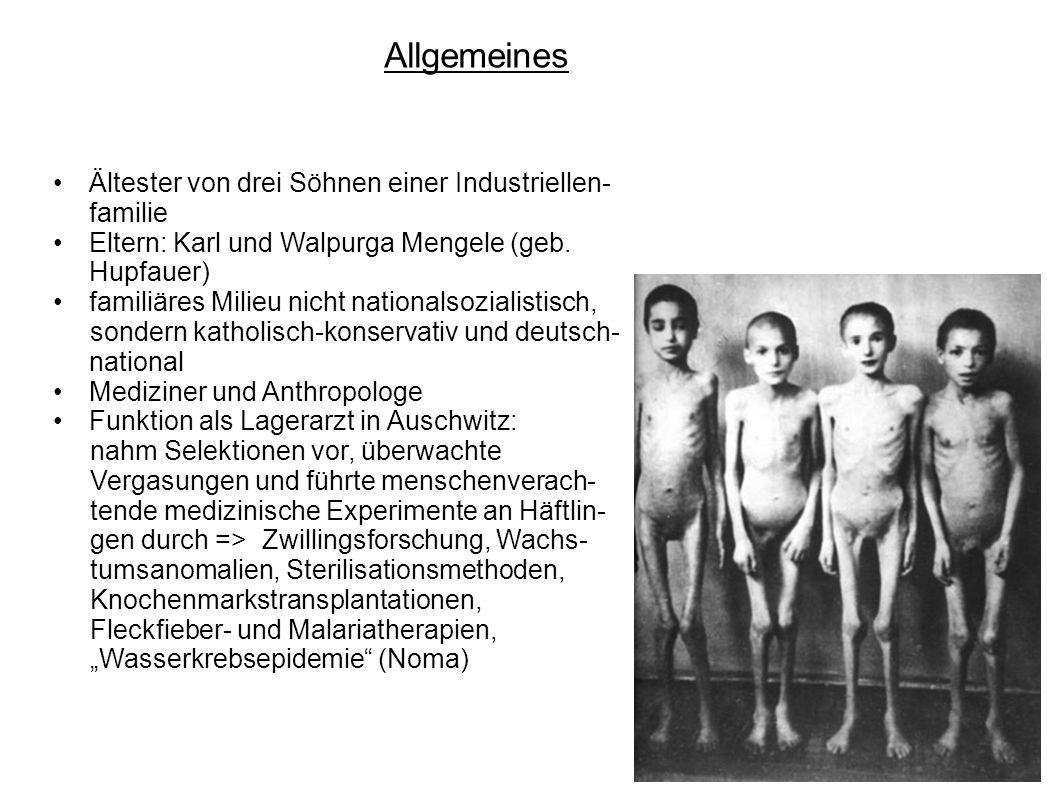 Allgemeines Ältester von drei Söhnen einer Industriellen- familie