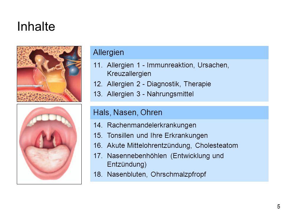 Inhalte Allergien Hals, Nasen, Ohren