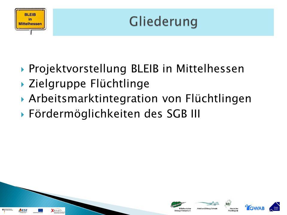 Gliederung Projektvorstellung BLEIB in Mittelhessen
