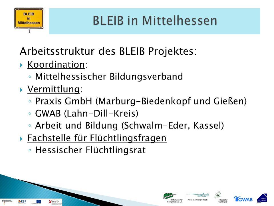 BLEIB in Mittelhessen Arbeitsstruktur des BLEIB Projektes:
