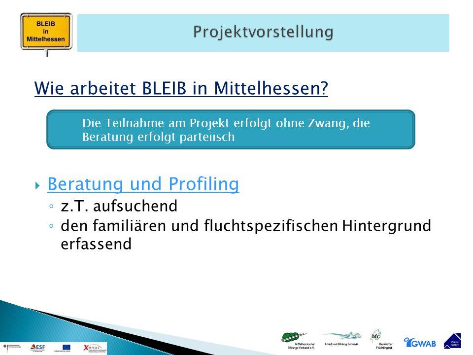 Wie arbeitet BLEIB in Mittelhessen